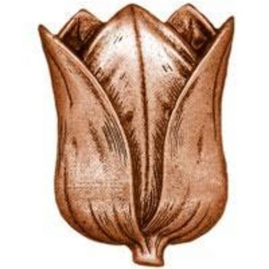 Dalka Tulip Knob, Antique Copper