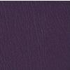 36376600 Purple Iris